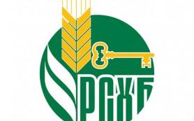 Россельхозбанк увеличит уставный капитал до 218 млрд рублей