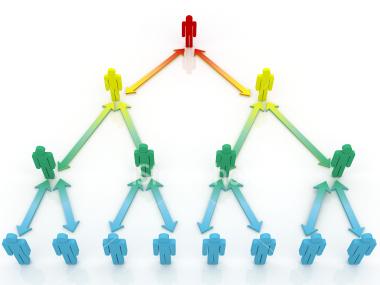 Как выбрать компанию для ведения сетевого бизнеса?