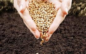 «Сбербанк» в рамках комплексной поддержки отечественных сельхозпроизводителей предложил им новые виды кредитов