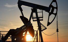 Цена на нефть марки Brent впервые с 19 октября превысила отметку в $53