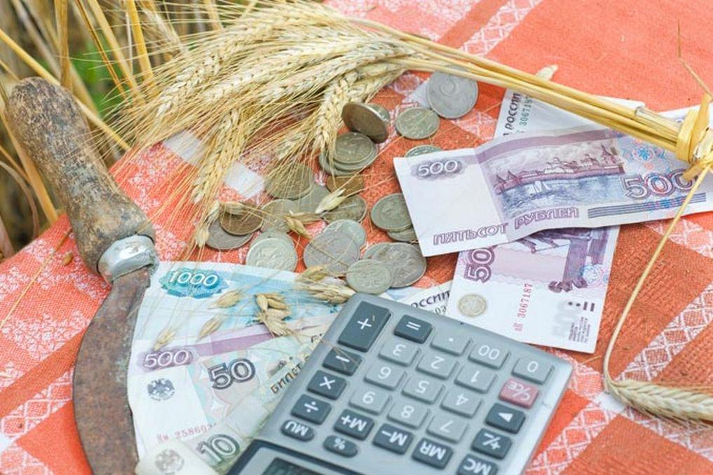Путин проверил кредитование аграриев