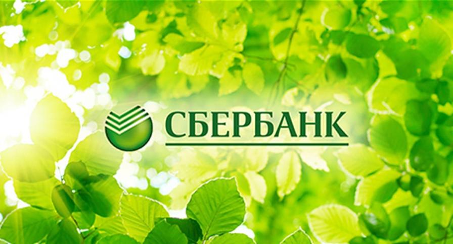 Сбербанк за шесть месяцев года получил чистую прибыль 317 млрд рублей по РСБУ