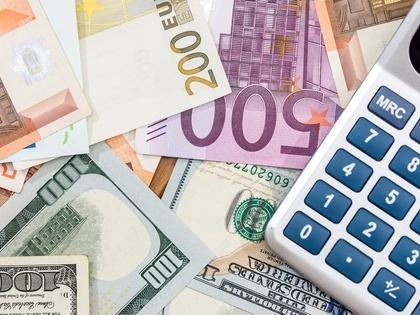 Минфин в январе закупит рекордный объем валюты