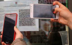 Россияне смогут переводить друг другу деньги по QR-коду через мессенджеры в 2019 году
