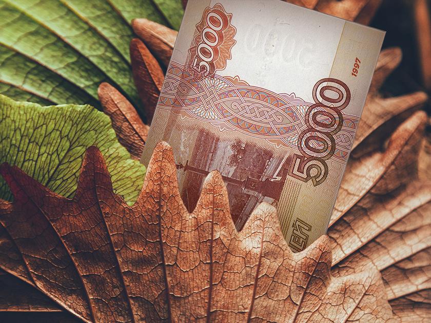 Вклад в осень: листья падают, ставки растут