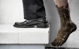 Из грязи в князи: как победить личную бедность