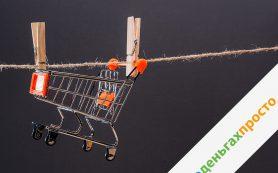 #оденьгахпросто: как экономить на продуктах, автомобиле и домашних питомцах