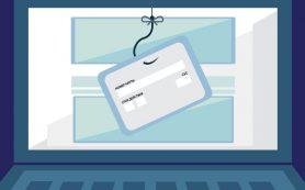 Как не дать деньгам «утечь» к интернет-мошенникам