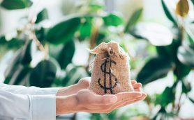 Валютные ПИФы: несите ваши доллары