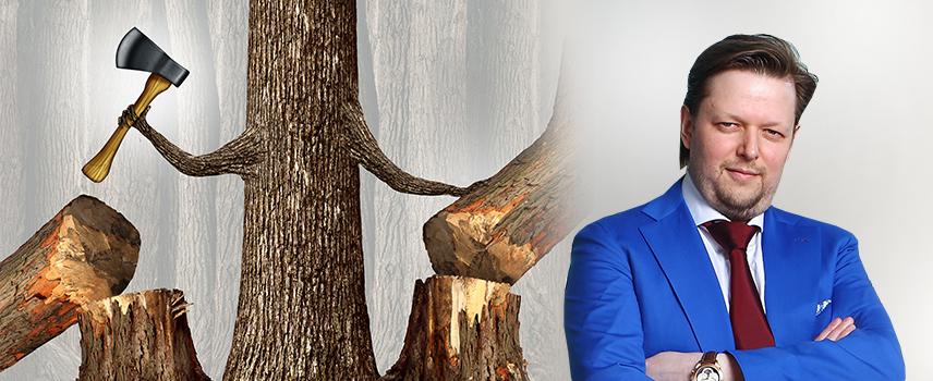 Лес рубят — щепки летят?