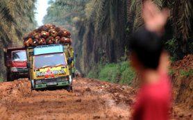 Индонезия объявила торговую войну Европе