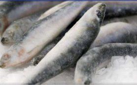 Росрыболовство сомневается в эффективности введения «рыбных интервенций» на минтай