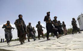 «Талибан» намерен сформировать совет из 12 человек для управления Афганистаном